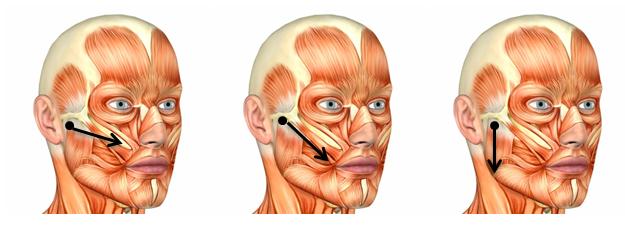 Disfunción Temporomandibular (DTM): síntomas, tratamiento y ...